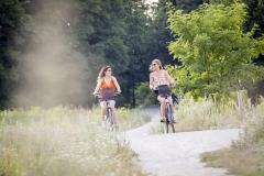 Einer von vielen Wegen fuer Radfahrer und Fussgaenger, die quer durch die Wulheide fuehren.