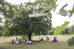 Picknick auf der Drachenwiese in der Wulheide